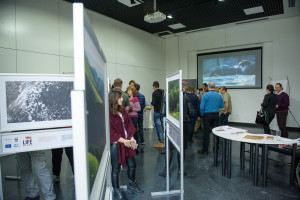 """Exhibition """"The largest land mammal in Europe returns to the Southern Carpathian wilderness"""", part of the LIFE Bison project is open to public until end of November."""