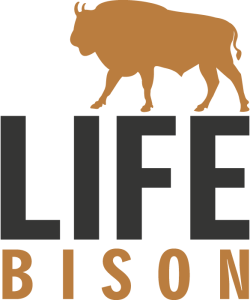 life-bison-logo-transparent