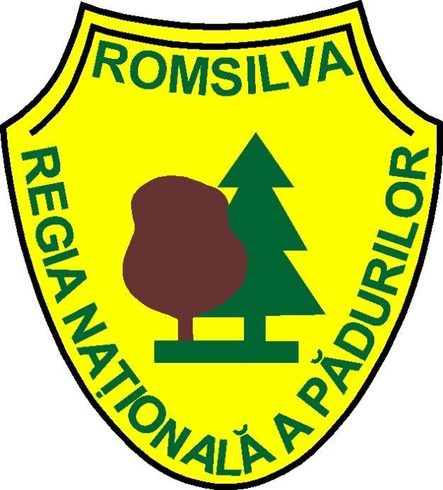 logo Romsilva